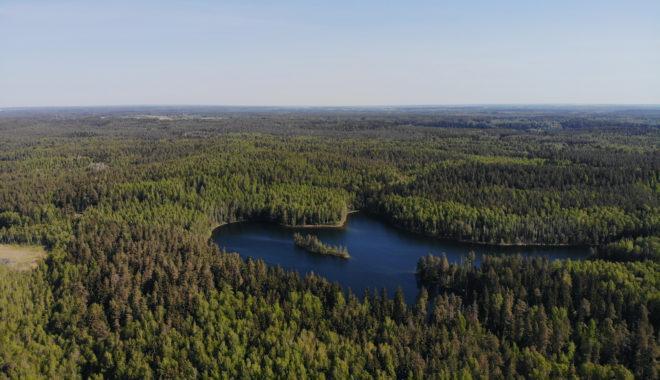 Лучшие озера Беларуси для купания