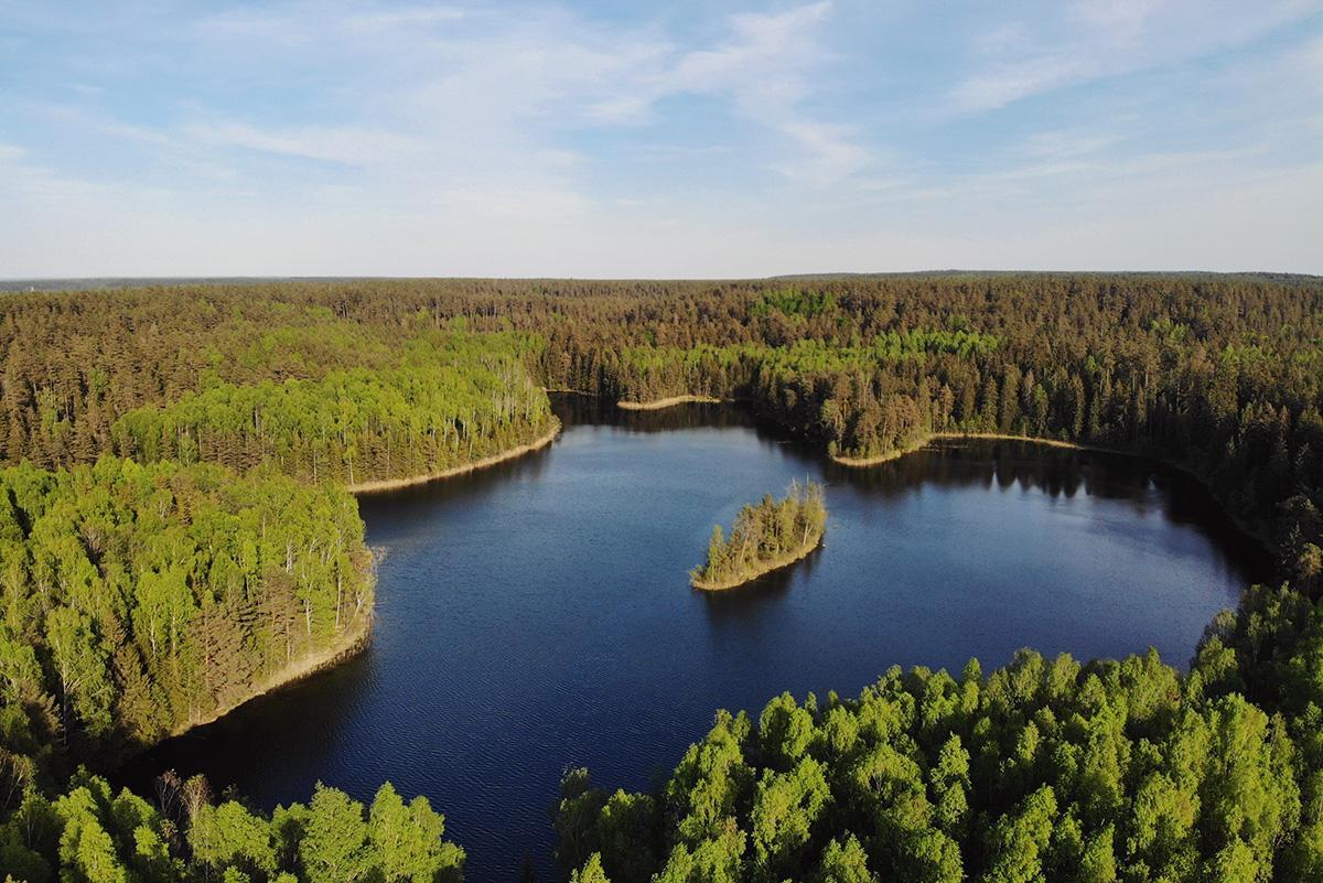 Озеро Глубелька - чистейшая вода, треккинг в лесу и ощущение уединенности