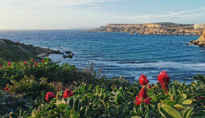 Горы или море. Что выбрать для полноценного отдыха?