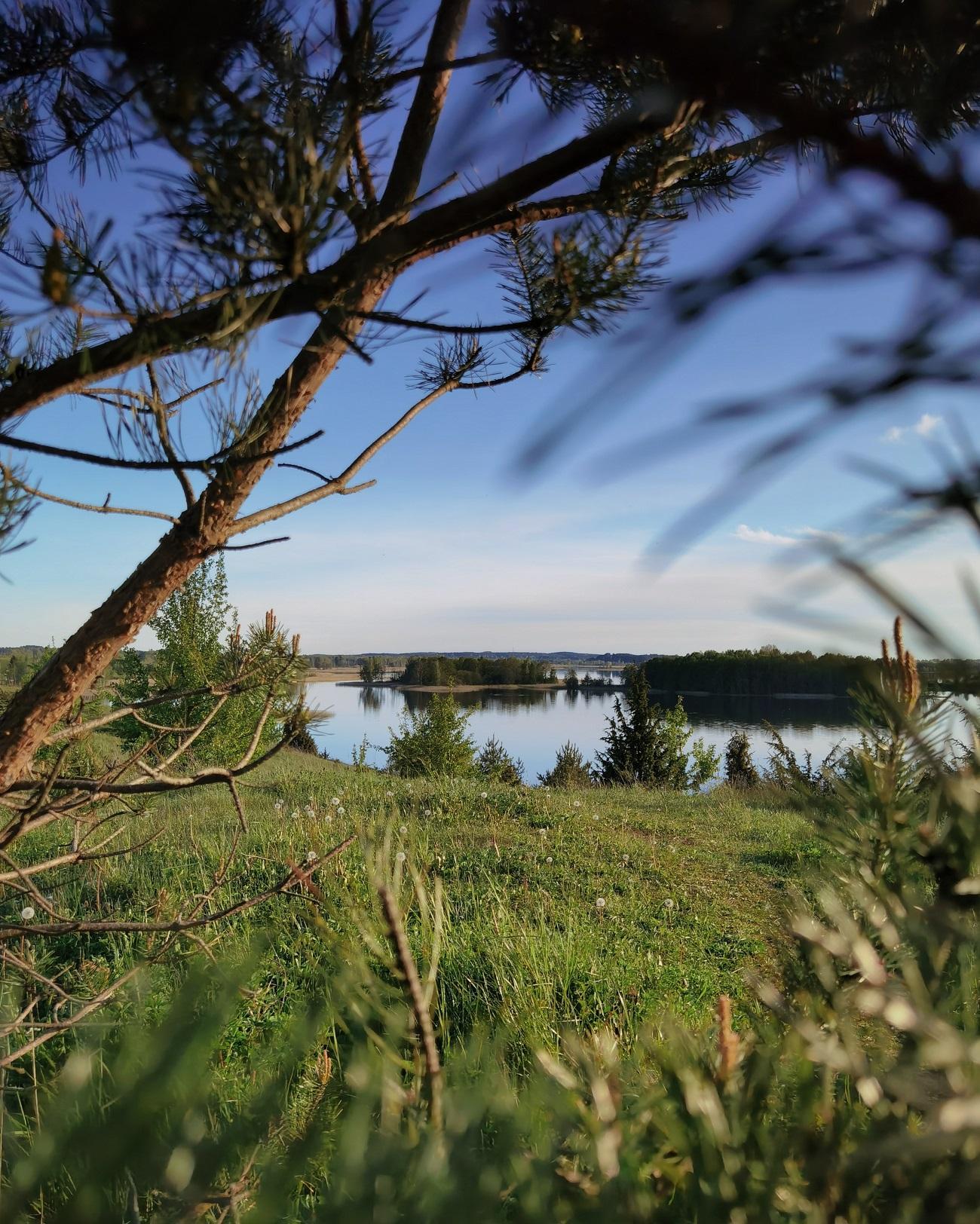 Взгляд на озеро Недрово, Браславские озера